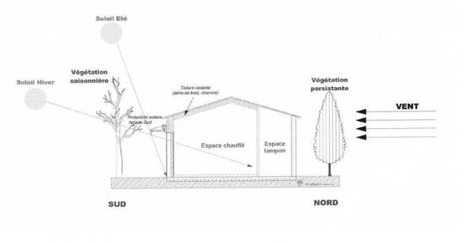 Orientation Construction